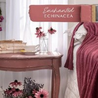 Fusion Enchanted Echinacea - 37ml